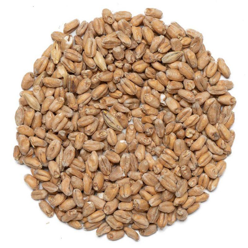 Viking malt wheat malt vehnämallas