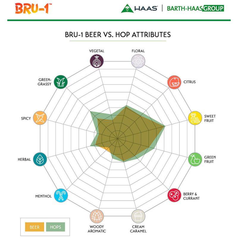 BRU-1 humalan aromiprofiili