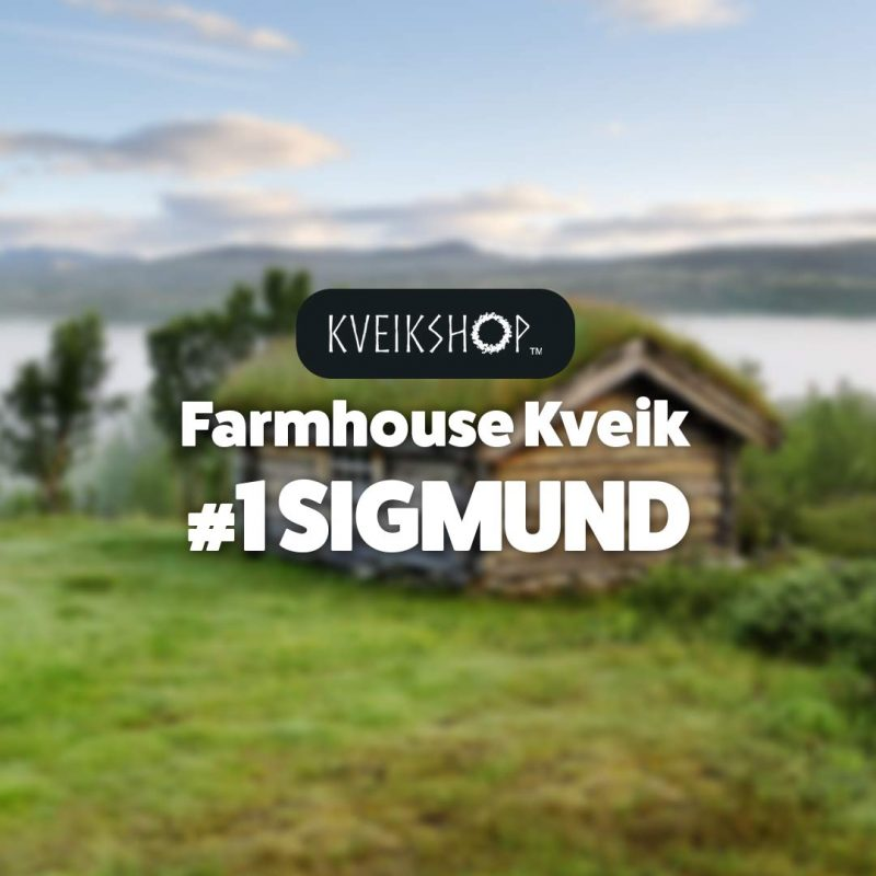 Farmhouse Kveik #1 Sigmund