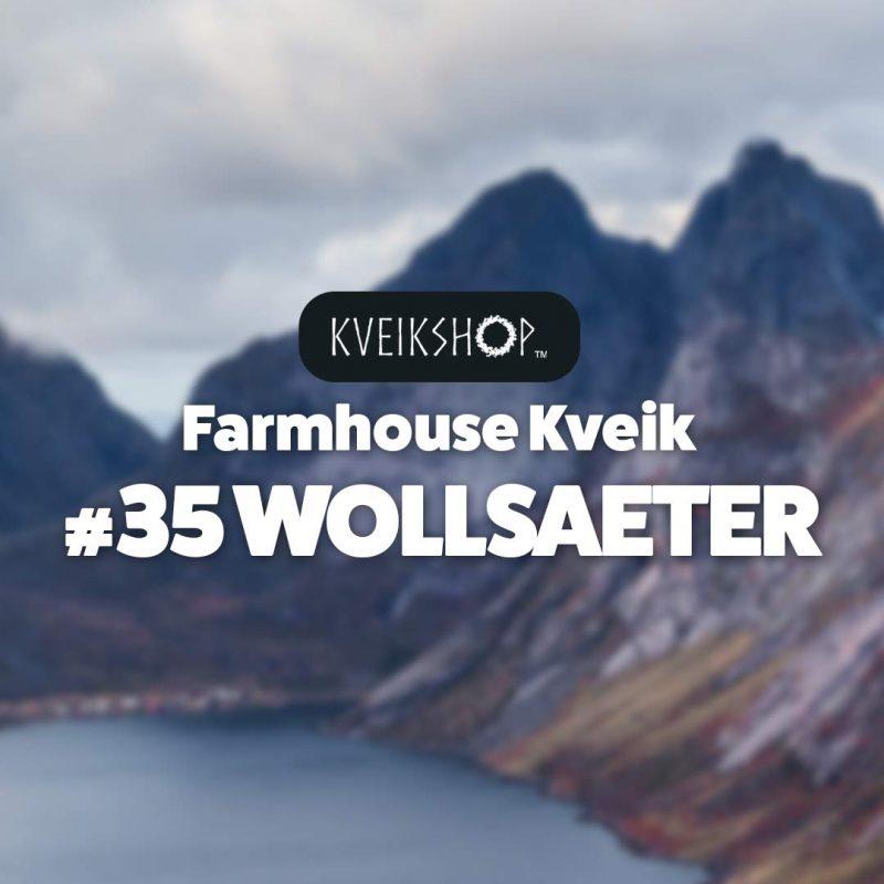 Farmhouse Kveik #35 Wollsaeter