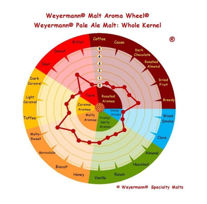 Weyermann pale ale malt aromi ja makuprofiili